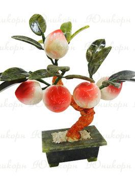 дерево счастья персик