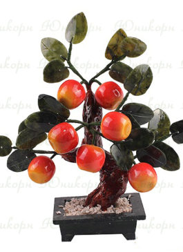 дерево счастья яблоня